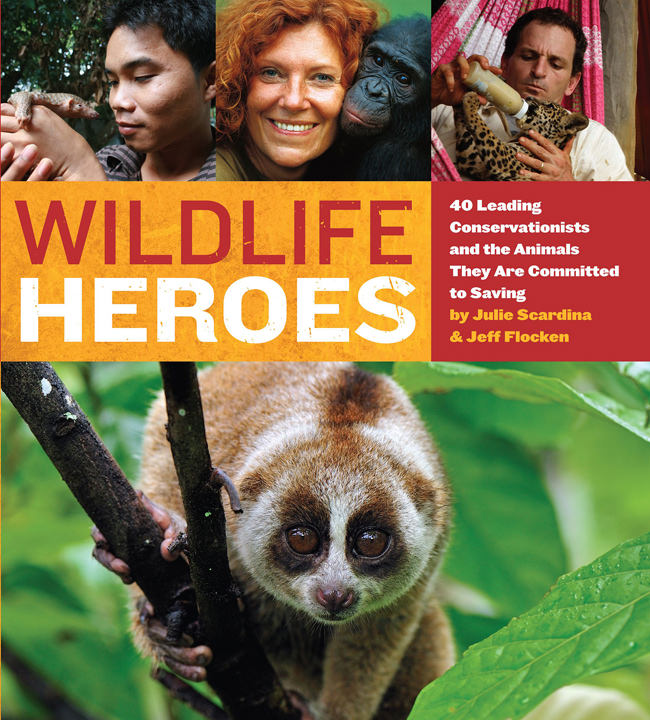 save wildlife essay